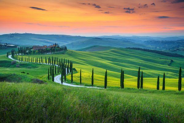 Paesaggio Chianti