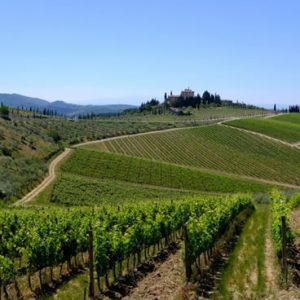 Dmc Toscana