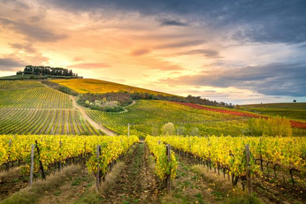 Viaggi di Gruppo Personalizzati Toscana